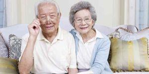 どうなるの?高齢者の運転免許証 / 自主返納制度は機能している?の画像